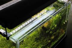 水草水槽には蛍光灯?アクアリウムにオススメな蛍光灯照明の選び方まとめ