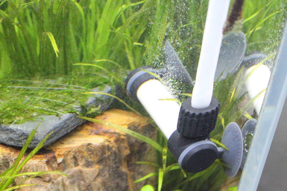 水草水槽に!自作や強制添加など水槽内にCO2を添加する方法・機器まとめ